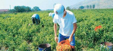 Οδηγίες για περιστασιακή εργασία εγγεγραμμένων ανέργων σε αγροτικό τομέα, μεταποίηση και αλλού