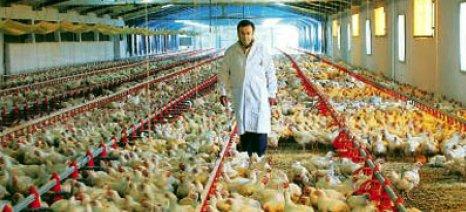 Ενισχύσεις για συμμετοχή σε βιολογικά, ΠΟΠ- ΠΓΕ οίνους και ειδικές πτηνοτροφικές εκτροφές