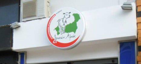 """Αναγνώριση του Κτηνοτροφικού Συνεταιρισμού Έβρου """"ΘΡΑΚΩΝ ΑΜΝΟΣ"""" ως Ομάδα Παραγωγών Γάλακτος"""