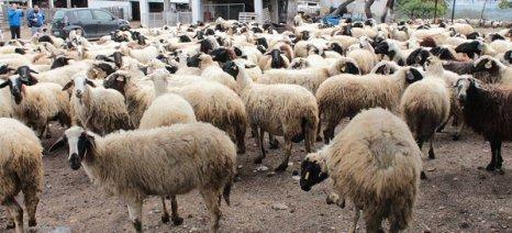 Η κτηνοτροφία στην Αττική