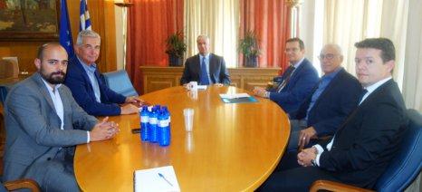 Άμεση λειτουργία του «Άρτεμις» για την καταπολέμηση ελληνοποιήσεων ζητά η Ένωση Αυγοπαραγωγών Ελλάδος
