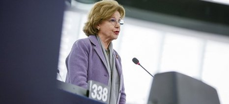 Το Ευρωπαϊκό Λαϊκό Κόμμα διαφωνεί με την Κομισιόν, που θέλει να ακυρώνει μονομερώς τα ΠΟΠ/ΠΓΕ αλκοολούχα ποτά
