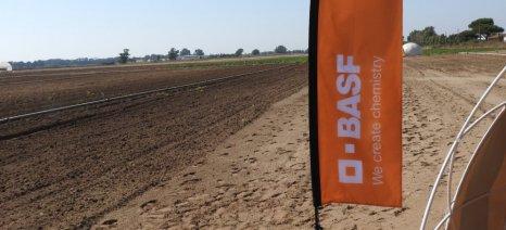 Στην αγορά των σπόρων εισέρχεται σήμερα και επίσημα η BASF