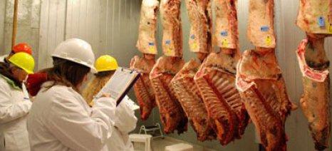 Μετά από πολυετή μείωση, αυξήθηκε η παραγωγή βοδινού στην Ε.Ε. τα έτη 2013-2015