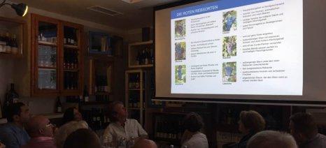 Σε Αμβούργο και Βερολίνο παρουσιάστηκαν τα ελληνικά κρασιά, στα πλαίσια του προγράμματος της ΕΔΟΑΟ