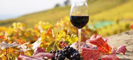 Το κρασί «άντεξε» στην κρίση, σύμφωνα με τον Στέλιο Μπουτάρη