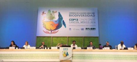 Υπογράφτηκε χθες η Διακήρυξη του Κανκούν για την προστασία της βιοποικιλότητας από 190 χώρες