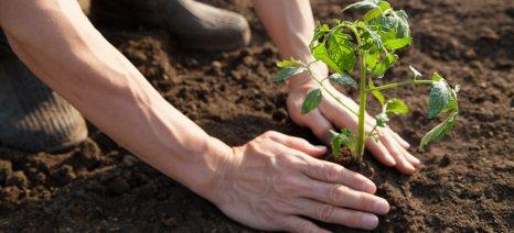 Μαθήματα εναλλακτικής γεωργίας με έμφαση στη βιοδυναμική από την Ακαδημία ΑΕΠΚΙ στην Κηφισιά