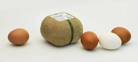 Μία συσκευασία αυγών που βιοδιασπάται και... φυτρώνουν φακές