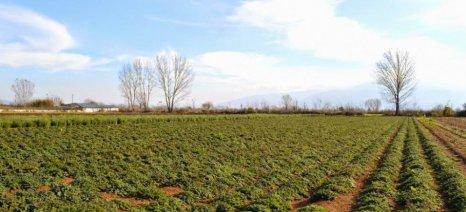 Αναρτήθηκαν οι καταστάσεις πληρωμής Βιολογικής Γεωργίας 2014 για τη Δυτική Μακεδονία