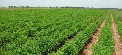 Ανακοινώθηκαν οι καταστάσεις πληρωμής για τη βιολογική γεωργία στη Λάρισα