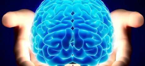 Ανακαλύφθηκε γονίδιο που επηρεάζει σημαντικά τον εγκέφαλο