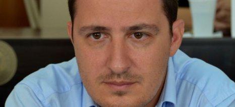 Να αποζημιωθούν οι ελαιοπαραγωγοί από τις πρόσφατες χαλαζοπτώσεις στην Ηλεία ζητά ο αντιπεριφερειάρχης