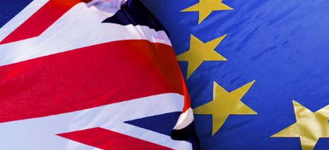 Brexit: Η βιομηχανία κρασιού της Βρετανίας θεωρεί ότι δεν συμβαίνει τίποτα