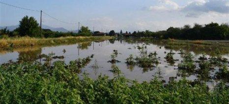Δηλώσεις ζημιάς για τους πλημμυροπαθείς παραγωγούς των Χανίων