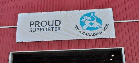 Γιατί το προστατευτικό σύστημα του Καναδά για τους αγελαδοτρόφους ενοχλεί τον Τραμπ