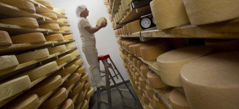Καναδάς: Αντισταθμιστικά μέτρα σε κτηνοτρόφους λόγω εισαγωγών ευρωπαϊκών τυριών