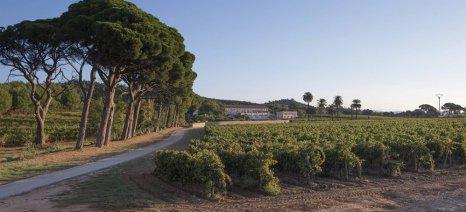 Ο οίκος Louis Vuitton αγοράζει οινοποιείο στις ακτές της Μεσογείου με στόχο την αγορά του day drinking