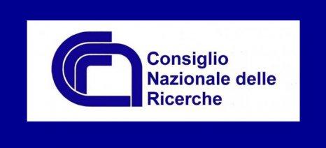 Ανθεκτική ποικιλία της ελιάς στην Xylella Fastidiosa διαθέτει στην αγορά το ιταλικό ερευνητικό ινστιτούτο CNR