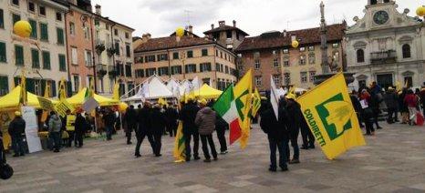 Δημόσιο άρμεγμα αγελάδων στις ιταλικές πόλεις - διαμαρτυρία της Coldiretti