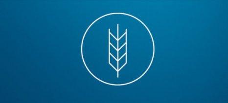 Μέτρα από την αναθεώρηση του προϋπολογισμού της Ε.Ε. για την κρίση στη γεωργία θέλουν οι ευρωβουλευτές της COMAGRI