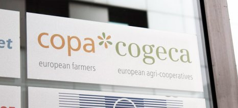 Μεγαλύτερη στήριξη για τον τομέα των οπωροκηπευτικών ζητούν με επιστολή τους οι Copa-Cogeca