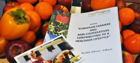 Χρειάζεται καινοτόμα γεωργική πολιτική για την καταπολέμηση της πείνας, σύμφωνα με τις Copa Cogeca
