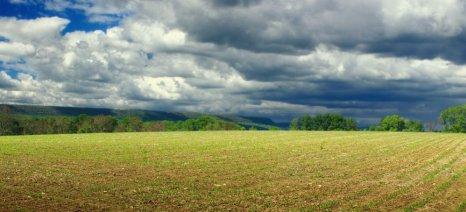 Επτά πράγματα που βρήκαν αγρότες στο χωράφι τους και έγιναν πλούσιοι