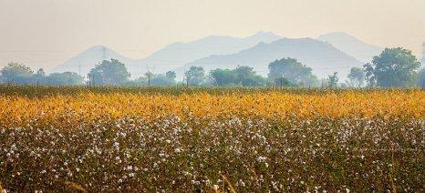 Τουρκικό ενδιαφέρον για επενδύσεις στην αγροτική γη της Εορδαίας