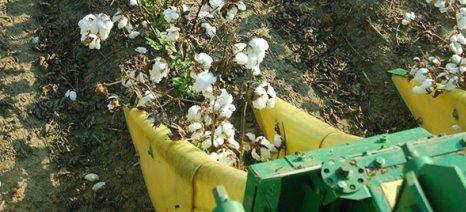 Ενέκρινε η Κομισιόν το ελληνικό αίτημα να επιτραπεί η εισαγωγή μεταχειρισμένων βαμβακοσυλλεκτικών μηχανών