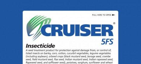 Την πλήρη απαγόρευση της χρήσης των νεονικοτινοειδών στις υπαίθριες καλλιέργειες αποφάσισε η Ε.Ε.