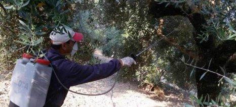 Στις περιφέρειες ρίχνει το «μπαλάκι» για την δακοπροστασία το ΥΠΑΑΤ και συζητά αποζημιώσεις ΠΣΕΑ για τους ελαιοκαλλιεργητές