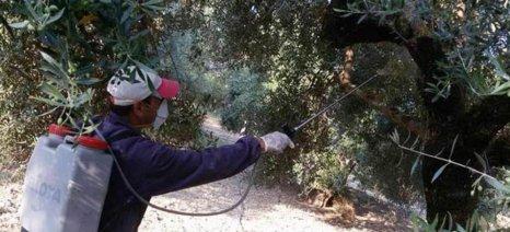Σύσκεψη για τους ελαιοπαραγωγούς της Κρήτης και τις συνέπειες του δάκου στο ΥπΑΑΤ