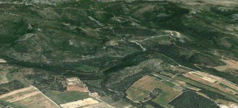 Με τροπολογία 3,5 εκατ. δασωμένα στρέμματα αποδίδονται για γεωργική χρήση
