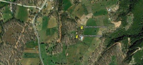 Αντιδρά η Ομοσπονδία Αγροτικών Συλλόγων Ηλείας στους δασικούς χάρτες