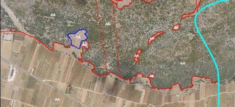 Ηλεκτρονικό Παρατηρητήριο Δασών μέχρι τον Οκτώβριο του 2015