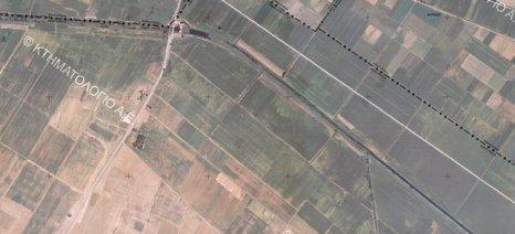 ΟΠΕΚΕΠΕ: Αναρτήθηκαν στο σύστημα τα ΑΦΜ των αγροτών που εμφανίζουν επικαλύψεις αγροτεμαχίων-δασικών χαρτών