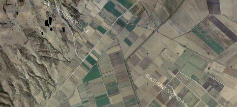 Αναρτήθηκαν οι δασικοί χάρτες της Θάσου