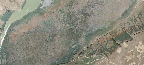 Ενημερωτική συνάντηση αύριο για τους δασικούς χάρτες Φλώρινας