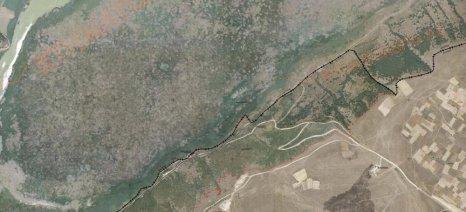 Ανάρτηση δασικών χαρτών για το σύνολο των νομών Σερρών, Καρδίτσας, Ημαθίας και Τρικάλων στις 30 Οκτωβρίου