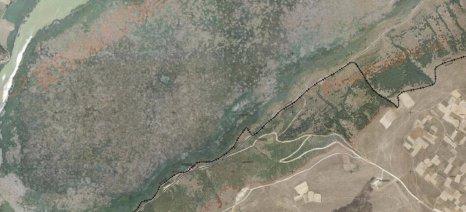 Τα βήματα που πρέπει να ακολουθήσουν οι αγρότες των οποίων τα αγροτεμάχια φαίνονται ως δασικά στους αναρτημένους χάρτες