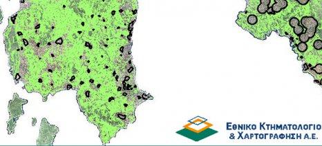 Κυρώθηκαν οι δασικοί χάρτες του 94,22% της Μεσσηνίας