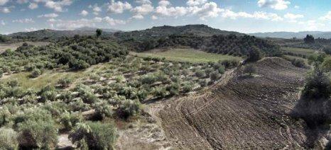Να τακτοποιηθούν οι δασωμένες γεωργικές εκτάσεις, που έχουν εγκαταλειφθεί, ζητά το ΓΕΩΤΕΕ Ηπείρου