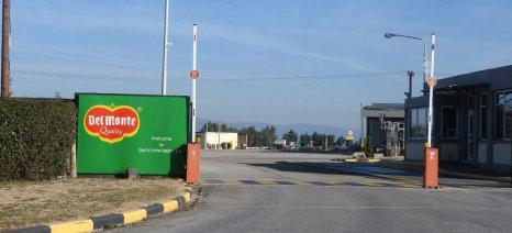 H Del Monte επενδύει 3 εκατ. ευρώ στο εργοστάσιο της Λάρισας