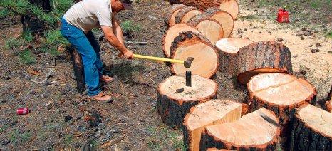 Ας προστατευθούν επιτέλους τα δάση μας!