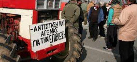 Κατά της ενοικίασης του δημοτικού σφαγείου Μανταμάδου σε ιδιώτη η ΟΑΣ Λέσβου
