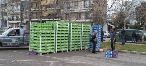 Υπογράφτηκε η απόφαση για τη διάθεση και της υπόλοιπης ποσότητας ροδάκινων για την επισιτιστική
