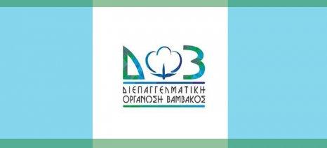 Τέσσερις ενημερωτικές εκδηλώσεις για το βαμβάκι από τη ΔΟΒ μέσα στον Φεβρουάριο