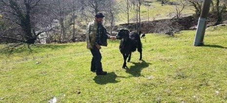 Σεμινάριο στη Δίβρη Ηλείας για το τι πρέπει να προσέχουν οι αγρότες για την υγεία τους