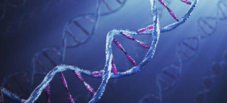 Έρευνα: Τα γονίδια του πατέρα είναι αυτά που τελικά επικρατούν
